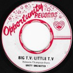 Big TV Little TV / Ver - Unity Unlimited