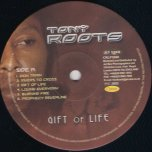 Gift Of Life - Tony Roots
