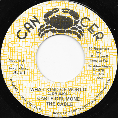 What Kind Of World / World Dub - Cable Drummond / The Cables