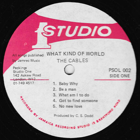 What Kind Of World - The Cables