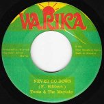 Never Go Down / In The Fire - Toots And The Maytals
