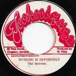 Nothing Is Impossible / Ver - The Interns / The Hardy Boys