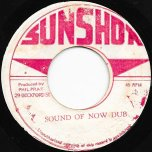 Party Time / Sound Of Now Dub - The Heptones