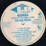 Seek And You Will Find-The Dub Pieces - Mixman