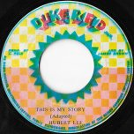 This Is My Story / Ver - Hubert Lee / King Tubby